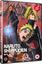 Naruto Shippuden Box Set 9
