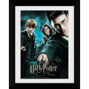 Harry Potter and the Order of the Phoenix All - Collector Print - 30 x 40cm
