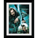 Harry Potter and the Order of the Phoenix Sirius - Collector Print - 30 x 40cm