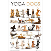 Yoga Dogs - Maxi Poster - 61 x 91.5cm