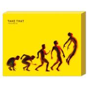 Take That Progress - 50 x 40cm Canvas
