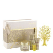 Decléor Wonders Of Nature Excellence Gift Set (4 Products)