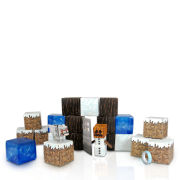 Minecraft Papercraft Over 48 Piece Set - Snow Biome Pack