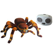 Remote Control Spiderbot