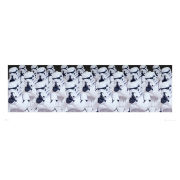 Star Wars Stormtroopers - Panoramic Print - 33 x 95cm