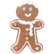 DIY Gingerbread Man Kit