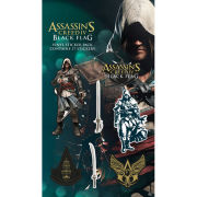 Assassins Creed IV Black Flag - Vinyl Sticker Pack