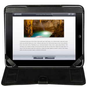 Fuse Leather iPad Folio Case – Black