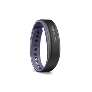 Garmin Vivosmart Wellness Band