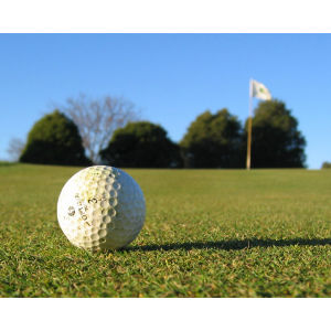 A Round of Golf Voucher