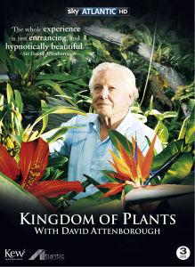 The Kingdom of Plants