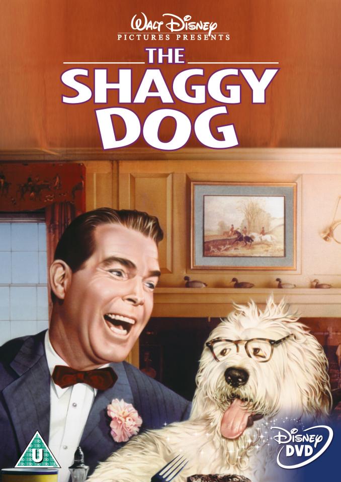 The Shaggy Dog 2006 film  Wikipedia