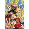 Dragon Ball Z Goku - 24 x 36 Inches Maxi Poster: Image 1