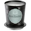 Aquiesse Tin Candle - White Tea and Mint: Image 1