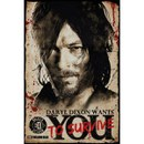 The Walking Dead Daryl Needs You - 24 x 36 Inches Maxi Poster