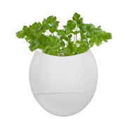 Life Pod - Self Watering Herb Pot