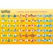 Pokémon Partner Pokémon - 24 x 36 Inches Maxi Poster