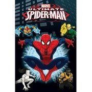 Marvel Spider-Man Heroes - 24 x 36 Inches Maxi Poster