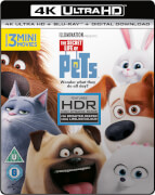 The Secret Life Of Pets - 4K Ultra HD