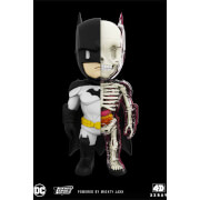 DC Comics 4D XXRAY Batman Figure