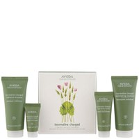 Aveda Tourmaline Charged Skincare Starter Kit (4 Products)