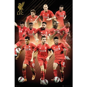 Liverpool Players 15/16 - 24 x 36 Inches Maxi Poster