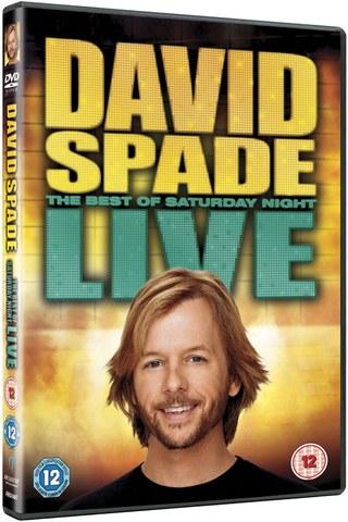 David Spade Live