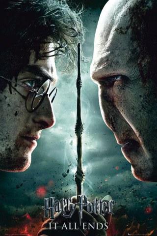 Harry Potter Part 2 Teaser - Maxi Poster - 61 x 91.5cm