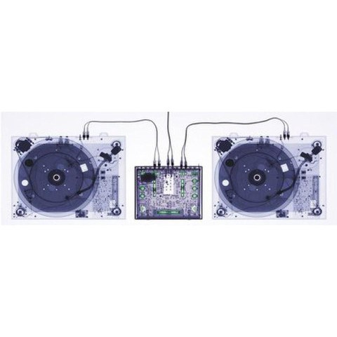 X-Ray Decks  - 24 x 36 Inches Maxi Poster
