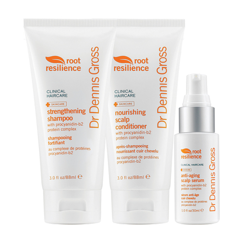 Dr. Dennis Gross Root Resilience Hair Protection Kit