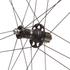 Campagnolo Bora Ultra 35 Clincher Wheelset: Image 5