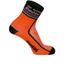 Santini De Rosa 16 Coolmax Socks - Black: Image 1