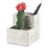 Concrete Desktop Planter and Pen Holder - Small: Image 2