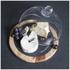 Natural Life Acacia Cheese Board (25cm): Image 2