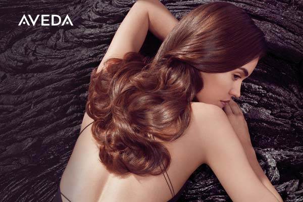 discover aveda