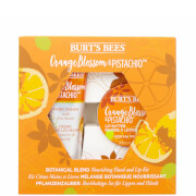Burt's Bees Botanical Blend Nourishing Hand and Lip Kit - Orange Blossom & Pistachio