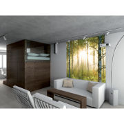 Forest Scene Deco Wall Mural