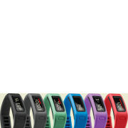 Garmin Vivofit Wellness Band