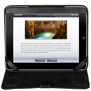 Fuse Leather iPad Folio Case – Black
