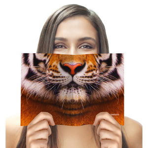 Animal Face Notebook - Tiger