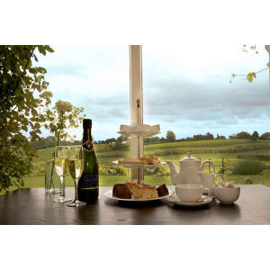 Afternoon Tea and Vineyard Tour with Wine Tasting For Two