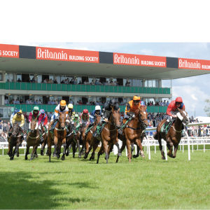 2 for 1 Premier Horse Racing Experience