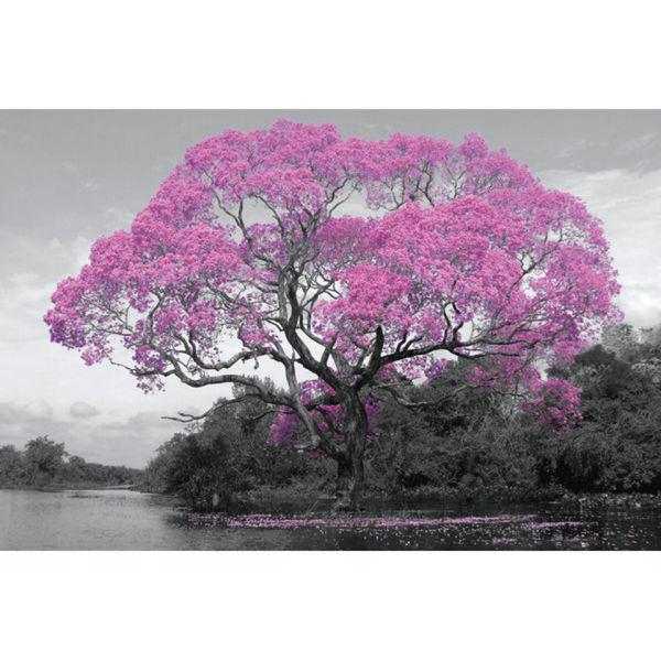 Tree Blossom Maxi Poster (61 x 91.5cm)