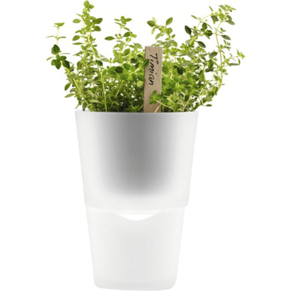 Eva Solo 11cm Self Watering Herb Pot - Frosted Glass