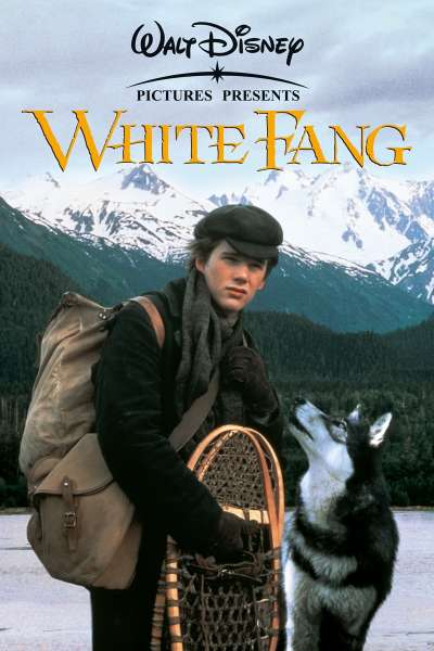 White Fang Dvd Zavvi
