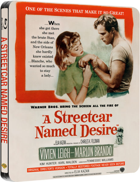 a review of the novel a streetcar named desire by tennessee william Tennessee williams (screen play  they told me to take a streetcar named desire and then transfer to one called cemetery and ride six  was this review helpful to.