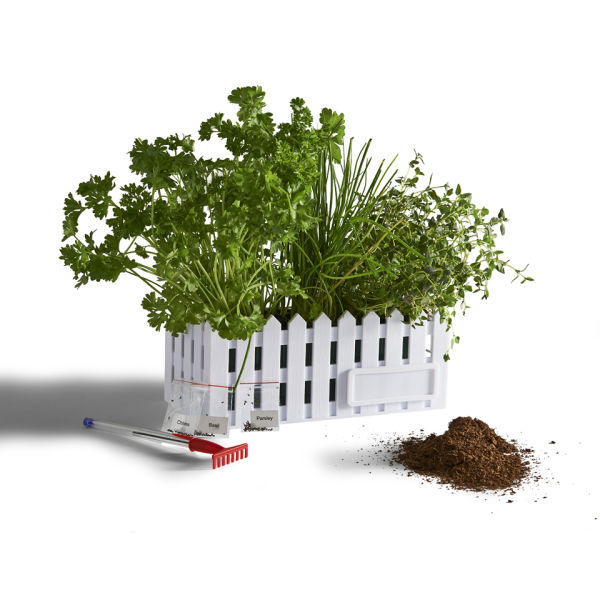 Desktop Herb Garden IWOOT