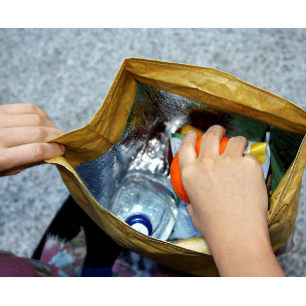 Image result for image of a hand lunch bag