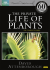 The Private Life of Plants: Image 1