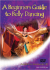 Beginners Guide to Belly Dancing: Image 1